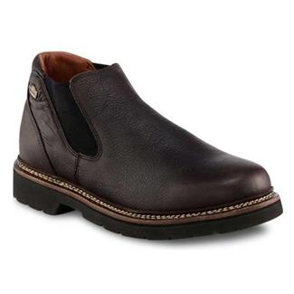 Irish Setter Countrysider Romeo Dark Brown