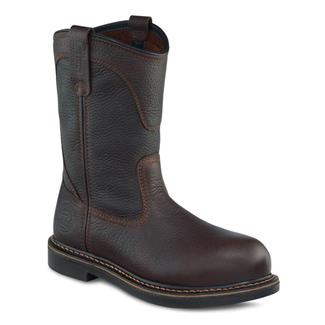Irish Setter 83905 Brown