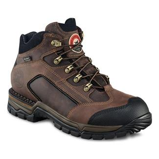 Irish Setter 83403 WP Brown