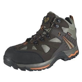 Golden Retriever Hiker CT WP Brown