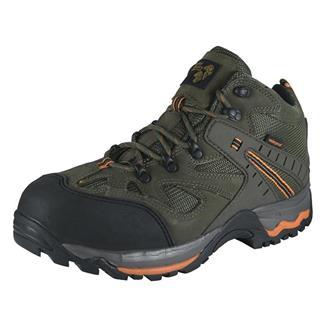 Golden Retriever Hiker CT WP Sage