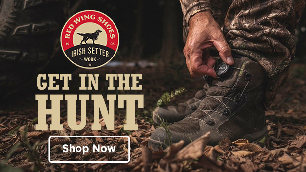 Shop Irish Setter