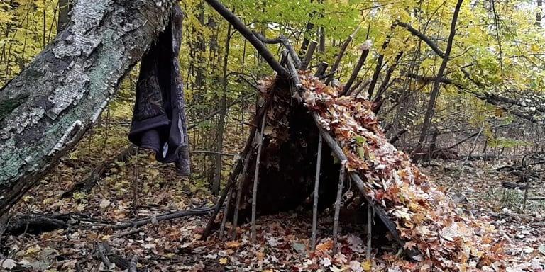 Leaf Hut