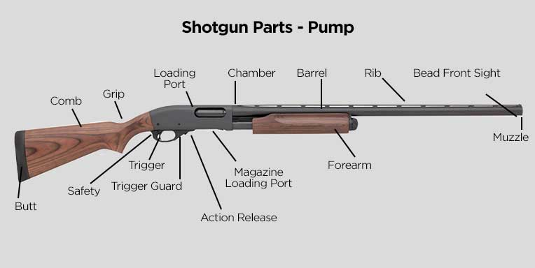 Shotgun Parts - Pump